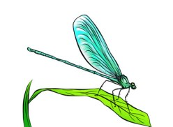 2-free-dragonfly-clip-art-l