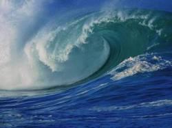 the-sea-around-us-wave